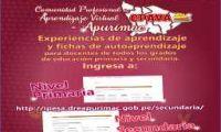 COMUNIDAD PROFESIONAL DE APRENDIZAJE VIRTUAL DE APURÍMAC